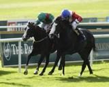 Four Sins gewinnt die Blandford Stakes, Gr.2