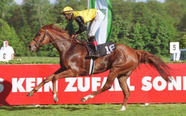 Zaza Top beim Sieg in Hoppegarten