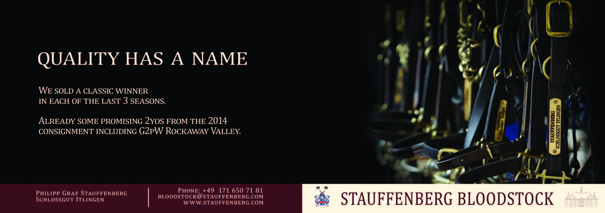 Stauffenberg Bloodstock | quality has a name